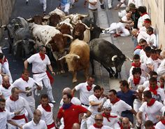 Running of the bulls: The most shocking photographs Pamplona hosts its infamous running of the bulls – part of the annual San Fermin festival – once again  -  July 7, 2017:      Bulls from the bull ranch Cebada Gago chase runners or 'mozos' in the Cuesta Santo Domingo