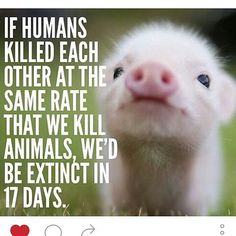 #vegan reality check. Also, if we try to maintain this meat eating at this rate, we'll all die anyway. Not as fast maybe, but it's asking too much of the earth. Even if it weren't cruel, it'd still be cruel!
