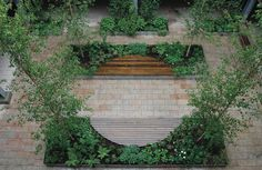 Garden by Anne Windsor - finalist in the SGD Awards 2017