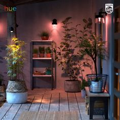 Add a rustic color to your porch or patio with Philips Hue. And mix functional lighting with colorful highlights, adjustable at the touch of a button. Visit our website for more inspiration and our entire range of smart indoor and outdoor LED fixtures. Outdoor Garden Lighting, Porch Lighting, Lighting Ideas, Smart Lighting System, Led Fixtures, Rustic Colors, Backyard, Patio, Colorful Garden