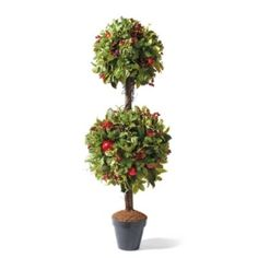 Williamsburg® Bassett Hall Topiary...would love 2 of these for my holiday decor