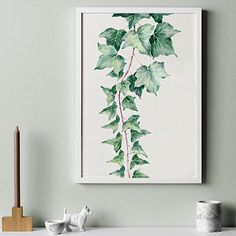 'Garden Ivy' by Stefan Gevers. Available as a limited edition print from Paper Empire www.paperempire.com.au