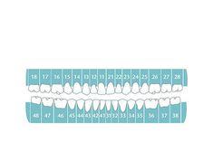 Gallery of GKK Dental Ambulatory / x Architekten - 8