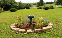 Put bird bath on top of drain with bushes and flowers around to hide the base of the drain Outdoor Landscaping, Landscaping Ideas, Outdoor Gardens, Summer Garden, Lawn And Garden, Septic Tank Covers, Fossa Séptica, Septic Tank Systems, Gardens