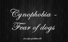 list of phobias tumblr