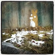 #streetart #kooky #bunny in #snow #grass #rocks at #Mechelininkatu #Street #Helsinki #katutaidetta #tölikkä #töölö #katutaide #graffiti #taide #kraffiti 17/1/17 ⛄ 🐰