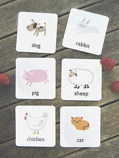 free printable animal flash cards