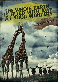 Psalm 65:8 - God Loves You - Share or Like if you feel his love - http://www.facebook.com/pages/God-Loves-You/177820385695769