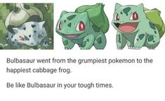 ª bulbasaur- -propaganda Bulbasaur went from the grumpiest pokemon to the happiest cabbage frog. Be like Bulbasaur in your tough times. Play Pokemon, Pokemon Comics, Pokemon Memes, Pokemon Funny, Cool Pokemon, Pokemon Stuff, Random Pokemon, Pokemon Pictures, Funny Pictures