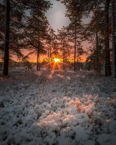 Snowy Pictures, Nature Pictures, Amazing Sunsets, Beautiful Sunset, Amazing Photography, Nature Photography, Happy Evening, Winter Light, Winter Scenery