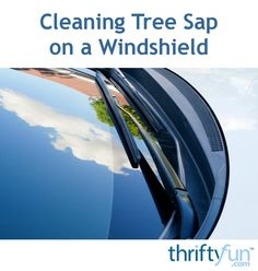 If your car gets parked under a tree that is dripping sap, it may be difficult to get the sap removed from your windshield and paint. This is a guide about cleaning tree sap on a windshield. Car Cleaning Hacks, Cleaning Solutions, Sap Removal From Car, How Do You Clean, How To Remove, Clean Inside Windshield, Remove Tree Sap, Auto Glass, Useful Life Hacks