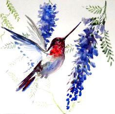 Hummingbird, Original watercolor painting, 12 X 12 in, blue, red, bird painting…