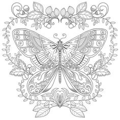 Nice Butterfly coloring outline