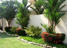 Backyard Landscaping Trees Plants Ideas For 2019 Florida Landscaping, Landscaping Trees, Tropical Landscaping, Front Yard Landscaping, Tropical Patio, Tropical Gardens, Backyard Garden Design, Garden Landscape Design, Backyard Ideas