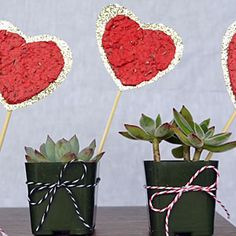 Watch how to make seed paper hearts for a heartfelt DIY Valentine's Day gift.