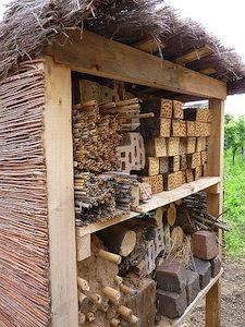 """""""Hôtel à insectes"""""""