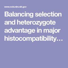 Balancing selection and heterozygote advantage in major histocompatibility…