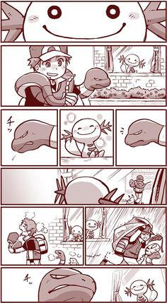 It reminds me Bakugou and Midoriya - Pokemon Pokemon Comics, Pokemon Memes, Pokemon Funny, Pokemon Fan Art, Pokemon Team, Pokemon Official, Pokemon Pictures, Cute Comics, Digimon