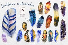 #Watercolor #feathers Bundle by Peace ART on @creativemarket