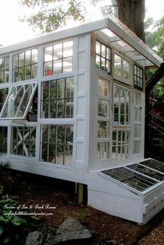 Green house of windows