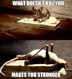 What doesn`t kill you.. makes you stronger !!