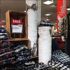 White Birch Trees, Birch Bark, Tree Trunks, Staging, Whiskey Bottle, Retail, Hanukkah, Christmas, Diy