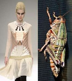 Mary Katrantzou. Grasshopper Couture