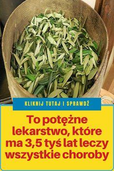 Green Beans, Herbs, Women's Fashion, Vegetables, Food, Fashion Women, Womens Fashion, Essen, Eten