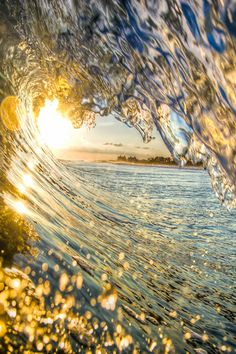 An enthralling golden wave...