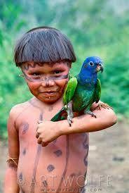 Yanomamo girl with blue-headed parrot Parima Tapirapeco National Park, Venezuela photo: Art Wolfe