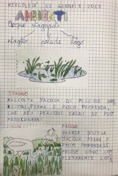 Projects For Kids, Geography, Kids Learning, Habitats, 1, Bullet Journal, Education, Studio, Ratatouille