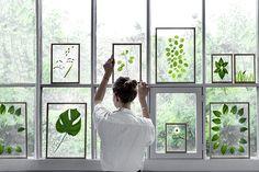 DIY: vyrobte si romantické obrazy s listami a kvetinami