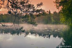 Photo print of a lake in Finland forest by behindmyblueeyes