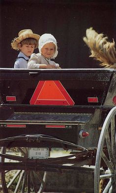 amish | Amish Kids in a Buggy