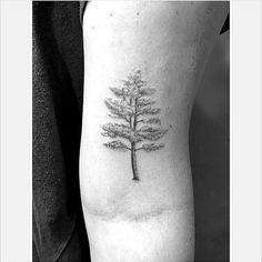 Trees still my favorite! #tattoosofinstagram #singleneedle #tattooedgirls #girlswithtattoos #tree #wild #life #2017 #letsgo!
