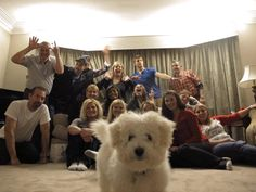 """afrofilipino: """" awwww-cute: """" Family Christmas picture photobomb """" those assholes ruined this dogs selfie """""""