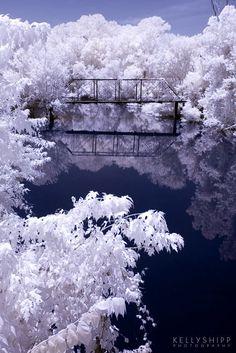 Old bridge near Morrilton, Arkansas. Color infrared. Orig # DSC_0119