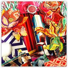 Creative Vision - Shelley Klammer
