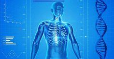 Corrige tu postura y endereza la espalda: consejos, ejercicios y estiramientos
