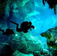 Mexico Blue Dream Dive Center | Playa del Carmen, Mexico