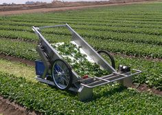 HarvestStar mini harvester - at $10,000 i will have to make my own.