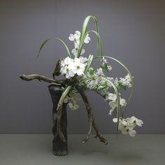 RK:Gordon's ikebana | Flickr - Photo Sharing!