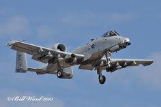 Fairchild A-10C Warthog cn0409 USAF 79-0145 DP 47 FS Dogpatchers a