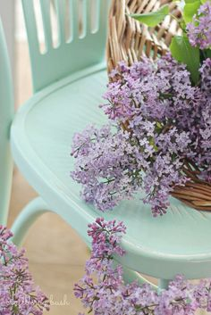 Beautiful lilacs and a turquoise chair | Craftberry Bush: Outdoor extravaganza