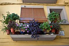 Balcony in Graus, Spain | Mariëtte Budel, on Flickr. #portals #windows #balcony #flowers #windowbox #ledge