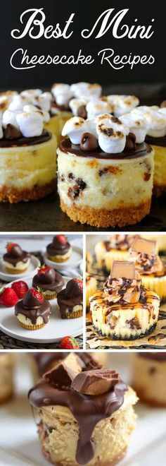Easy and luscious mini cheesecake recipes are bite-size and pure delicious!