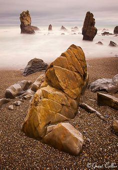 New Zealand Sea Stacks-photo by Grant Collier