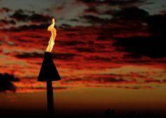 Hawaiian torch