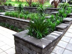 Small front garden ideas australia 17 best images about retaining wall ideas on gardens raised beds Small Front Garden Ideas Australia, Small Front Gardens, Small Backyard Gardens, Garden Design Plans, Small Garden Design, Steep Gardens, Garden Retaining Wall, Sloped Garden, Australia Landscape