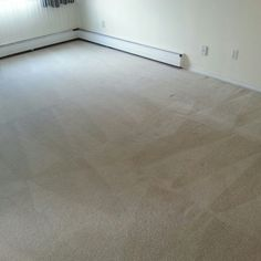I am a Carpet Cleaning Services in Edmonton, Alberta, Canada. How To Clean Carpet, Tile Floor, Canada, Cleaning Services, Stony, Housekeeping, Maid Services, Tile Flooring
